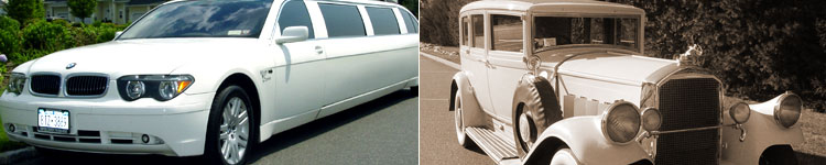 M & V Limousine - The Ultimate in Exotic Luxury