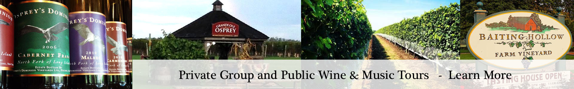 Long Island Wine Tours Private and Public