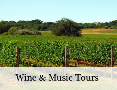Introducing the M&V Long Island Music and Wine Tours
